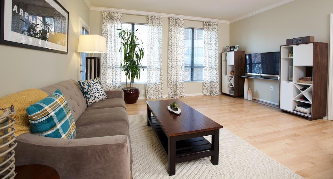 apartment interior - living room